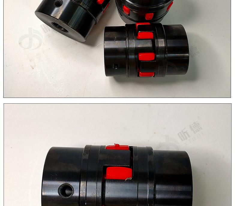 XL星型聯軸器_11.jpg